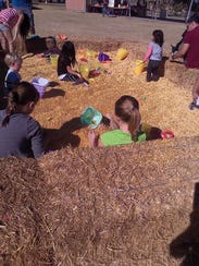 Take a hayride or pony ride around the park while enjoying