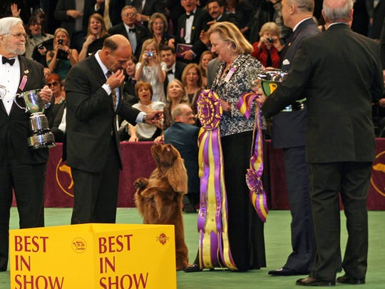 To check for remaining reservations or to learn more about the auction items like a trip to the Westminster Dog Show, call 575-808-8424 and leave a message.