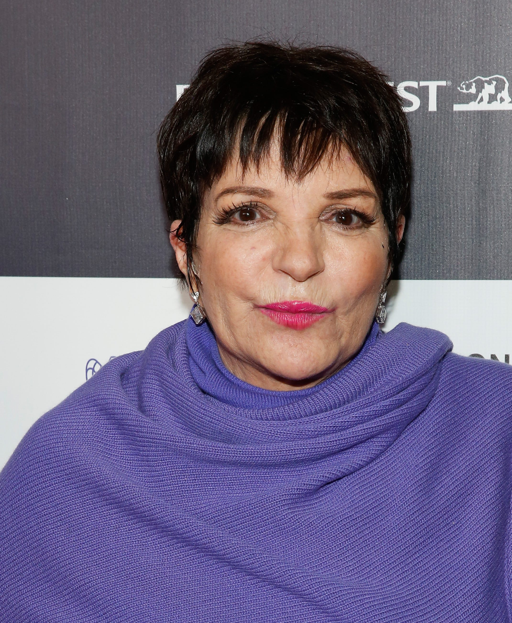Liza Minnelli nudes (33 photos), Tits, Cleavage, Boobs, butt 2015