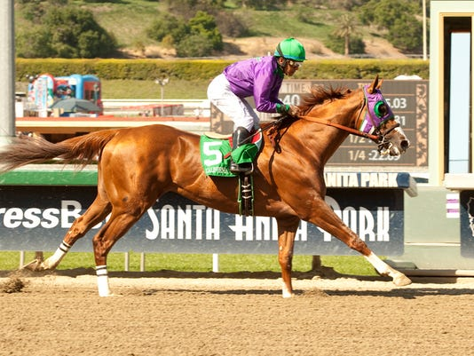 California Chrome a1 72.jpg