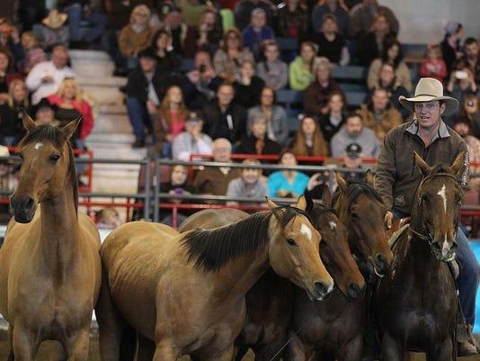 Horsefest-07360.jpg