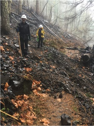 Damage to the Pacific Crest Trail from the Eagle Creek Fire.