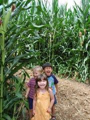 Corn maze excitement at Eliada