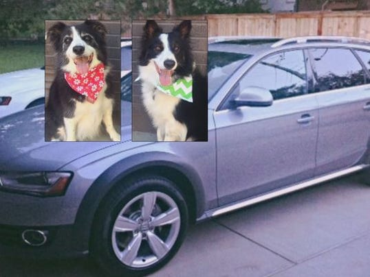 Stolen dogs, car found in Boulder