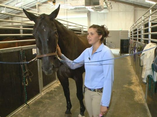Claire Davis horse