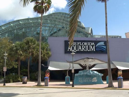 Visit 3 Tampa Area Attractions For Price Of 1