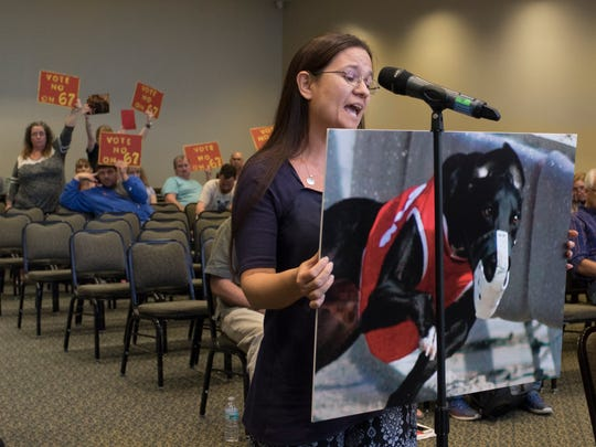Theresa Dennis, of Fort Walton, voices her support for a proposal to prohibit wagering on greyhound racing while opponents to the ban hold signs in the background during the Constitution Revision Commission's public hearing on Feb. 27, 2018, at the University of West Florida in Pensacola.