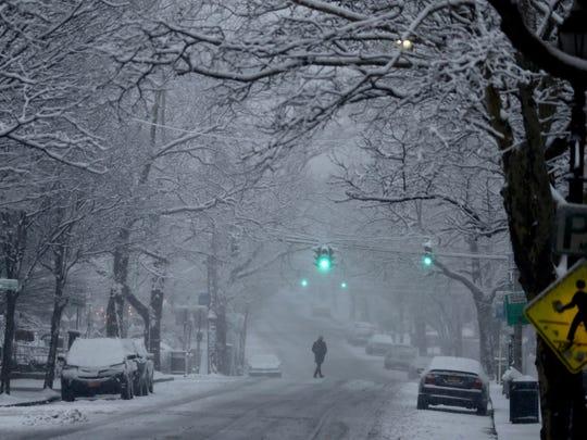 Heavy, wet snow stuck to trees, sidewalks, and roadways