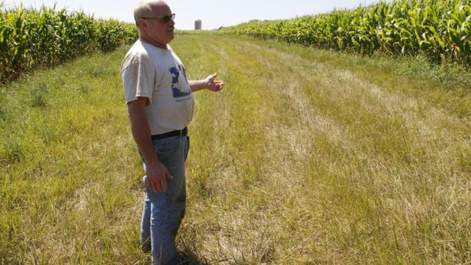 Kewaunee County dairy farmer Chuck Kinnard walks a grassed waterway on his land, built to keep runoff from contaminating groundwater, in July 2012. Like many farmers here, he is acutely aware of what a thin layer of soil protects the bedrock below.