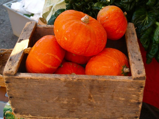 Mountain Harvest Organics_Pumpkins