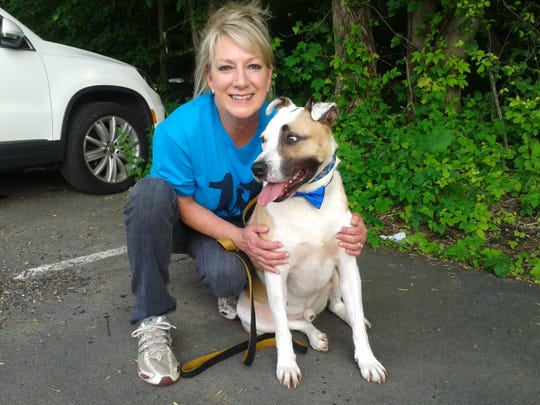 Eleventh Hour Rescue volunteer Debbie DePugh of Denville with Biscuit. DePugh is trying to find Biscuit his forever home. Biscuit is the longest-tenured dog at EHR's kennel at four years and seven months.