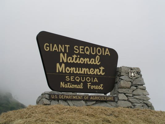 Monument Sign 001