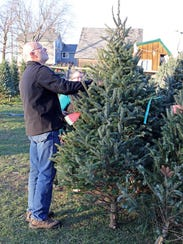 Bill and Jodi Gebhard, of Vernon, pick out a fir at
