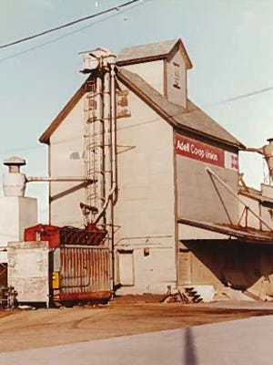 Adell Cooperative entered the grain business in 1967, installing a small MC dryer and an elevator leg on the south end of the Josse Feed Mill.