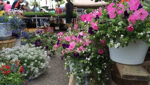 Spring flowers at the farmers market will add local color to downtown Farmington's Art on the Grand celebration this weekend.