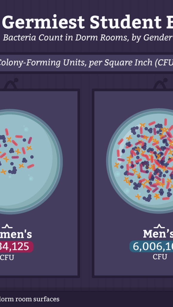 CollegeStats.org https://collegestats.org/explore/bacteria-on-campus/