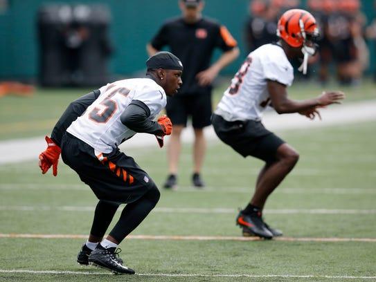Cincinnati Bengals rookie receiver John Ross (15) and