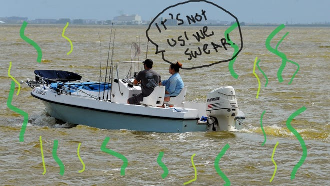 Why does the Indian River stink? Blame it on the a-a-a-a-a-lgae