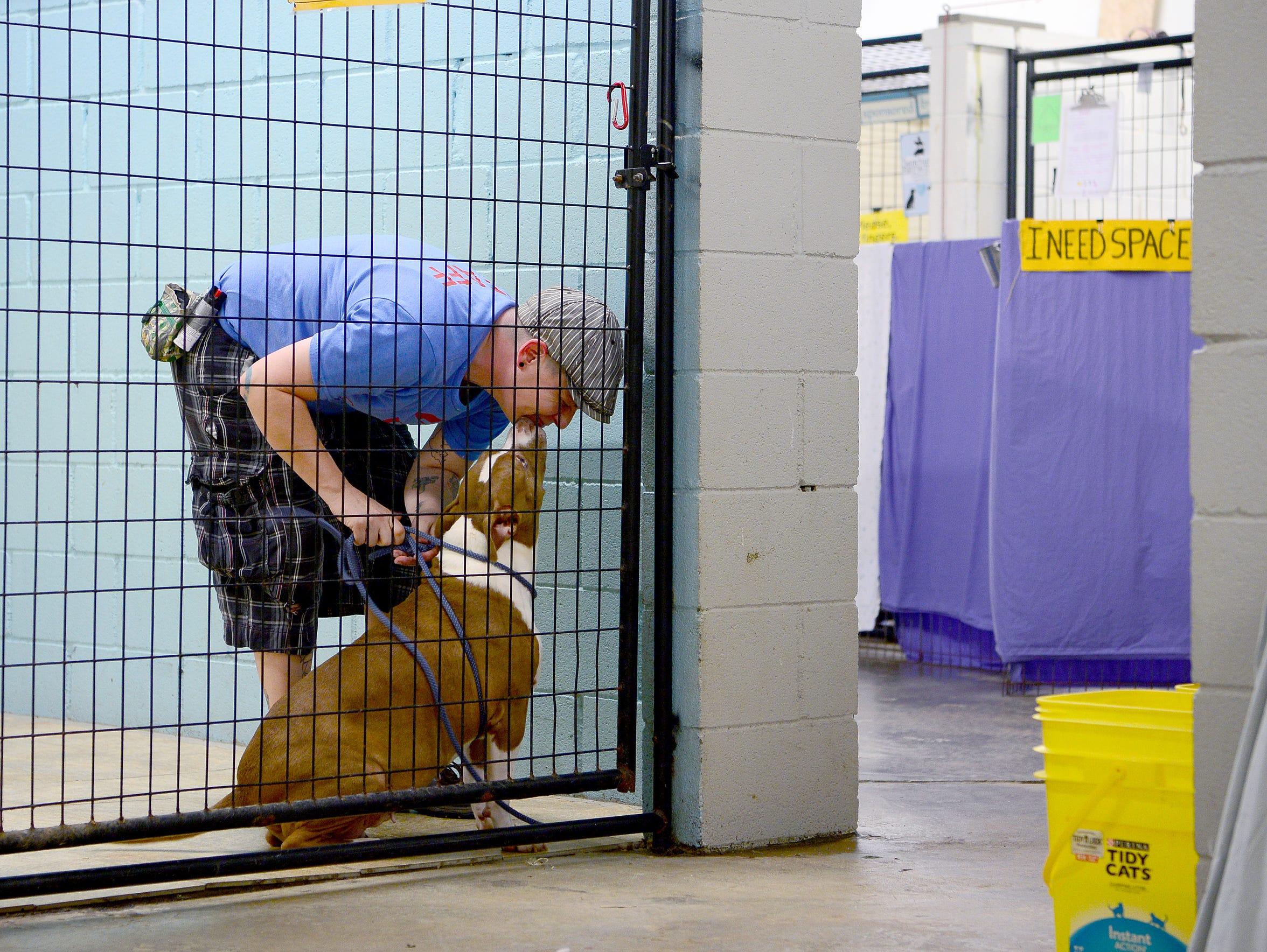 Brother Wolf Animal Rescue staff member Hannah Edgar