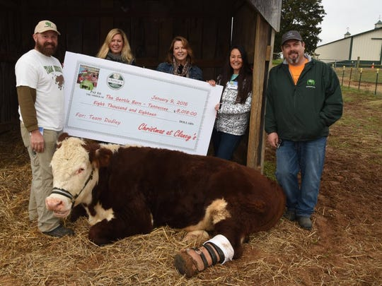 Mike Stiles, The Gentle Barn farm manager; Cindy Fircetz and Becky Mink, Christmas at Clancy's for A Cause coordinator; and Ellie Laks and Jay Weiner, cofounders of The Gentle Barn, (left to right) with a $8,018 check. The money was raised at a christmas party held at Clancy's Tavern and Whiskey House on Gay Street in Knoxville. The donation will help Dudley, the 800-pound Hereford yearling steer get a new prosthetic leg. J. Miles Cary/Special to the News Sentinel