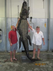 Stu Franklin, left, and Ed Venters pose with their gator.