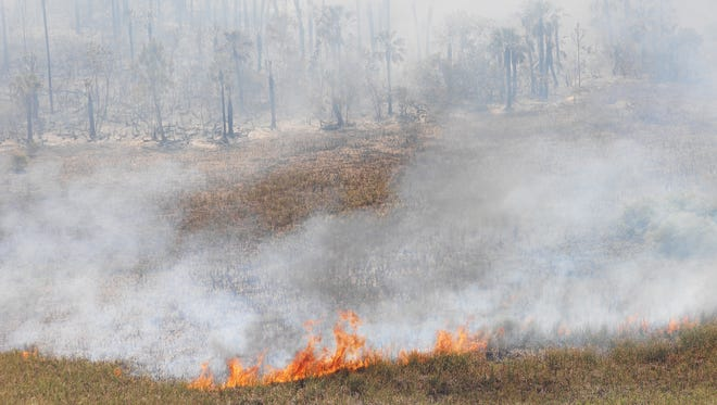 A 2009 file photo of a brush fire in the Big Cypress Preserve.