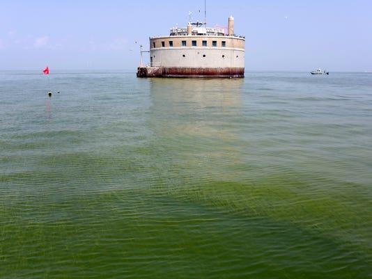 Lake Erie Algae_Olso.jpg