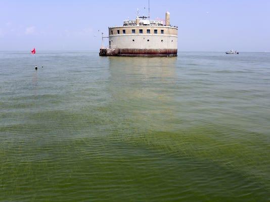 Lake Erie Algae
