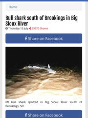 A false news story circulating around Facebook claimed a shark was sighted in the Big Sioux River July 12. There was not a shark in the Big Sioux River.