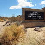 The north entrance to Joshua Tree National Park along Utah Trail in Twentynine Palms. The park is among many federal lands that could benefit from the The Land and Water Conservation Fund, which has had wide bipartisan support for 50 years but is now held up in Congress.