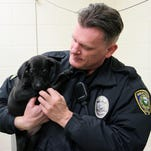Animal Control officer Dave Connor holds a black lab puppy at the Great Falls Animal Shelter.