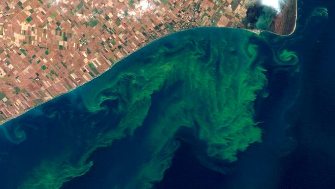 This Oct. 5, 2011 satellite photo from a NASA website shows algae blooms swirling on Lake Erie. A study released Monday, April 1, 2013 said the warming climate and modern farming practices are creating ideal conditions for gigantic algae formations on Lake Erie. The shallowest and southernmost of the Great Lakes, Erie contains just 2 percent of their combined waters but about half their fish.