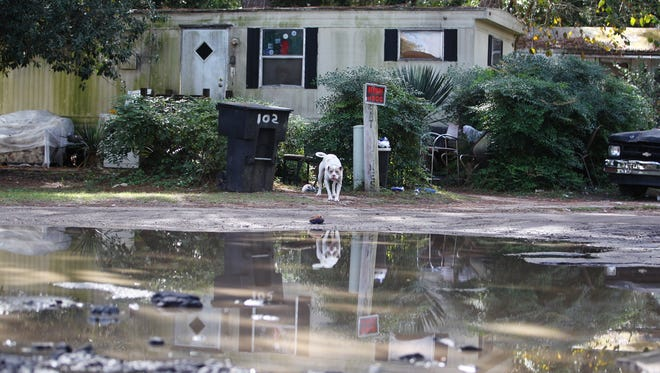 Pine Ridge Mobile Home Estates in south Tallahassee has received far more noise complaints than any other Tallahassee  neighborhood, bar, restaurant and apartment complex.