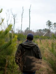 Delaware Wild Lands field ecologist Andrew Martin tours the Great Cypress Swamp in Frankford.