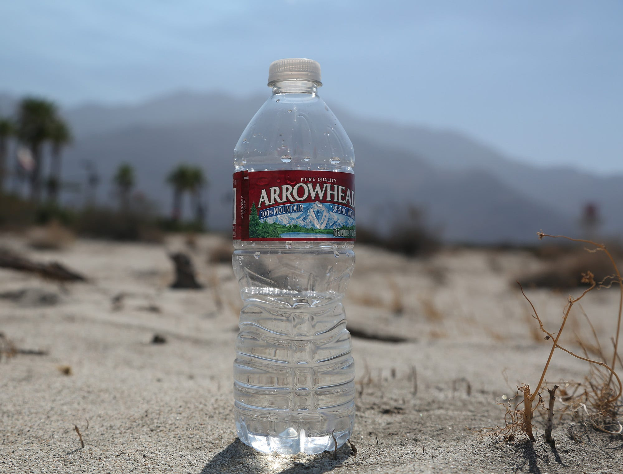 Britons urged to ditch bottled water foto