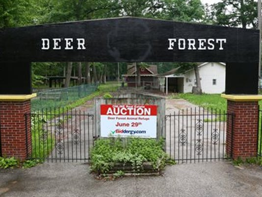 Deer Forest Auction