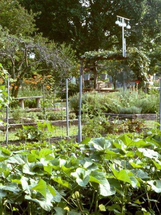 636451445548515065-10-30-17-Vegetable-garden.jpg