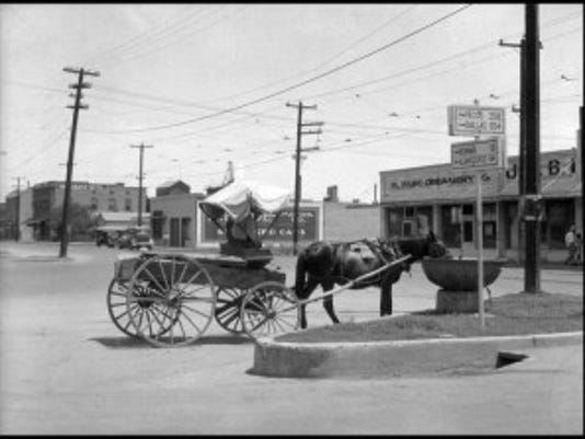 El Paso Public Library: A horse pulling a covered wagon and drinking from a bowl-shaped trough. A man wearing overalls is sitting in the driver's seat. Businesses and cars can be seen on the other side of the street.