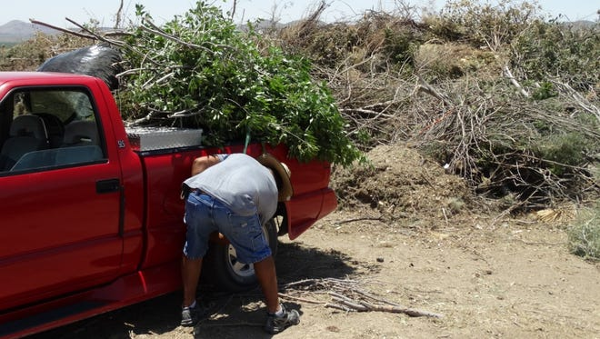 A customer drops off green waste at the Hill County Convenience Center during the summer of 2016. Starting Dec.1, the green waste program will go on hiatus for six months so officials can clean, repair and perform maintenance on the chipping and grinding equipment used at the eight Doña Ana County Convenience Centers.