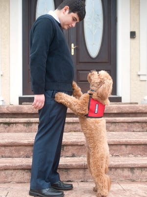 Ben Shore, 16 of Cherry Hill, pictured with his service dog, Charlie,  is petitioning local and state officials to criminalize the denial of legitimate service animals in public places.  05.04.16
