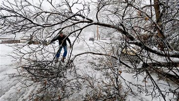 David Harrison clears away branches that fell onto a street in Boulder, Colo., Wednesday, March 23, 2016. Heavy snow and strong winds have shut down some highways and schools in Colorado. (Cliff Grassmick/Daily Camera via AP) NO SALES; MANDATORY CREDIT