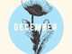 Six produce to look for in December: Radicchio, rapini,