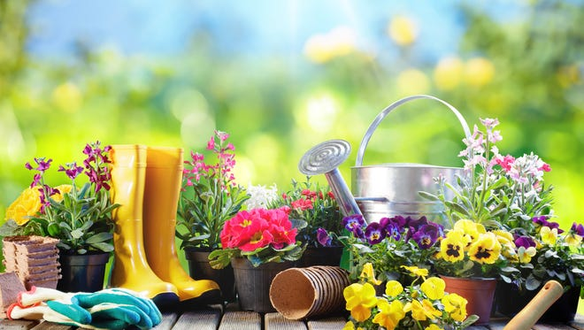 Set Of Tools For Gardener And Flowerpots In Sunny Garden