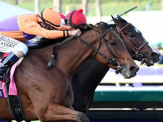 Horse Racing: 33rd Breeders Cup World Championships