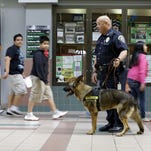 Officer Matthew Hickey of the Lawrence, Ind., Police Department walks the halls of a middle school with his dog, Axel, a 5-year-old German shepherd who spent three years in Afghanistan.