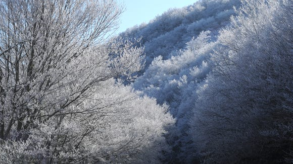 Rime ice and a dusting of snow coat the trees at Craggy Gardens along the Blue Ridge Parkway north of Asheville.