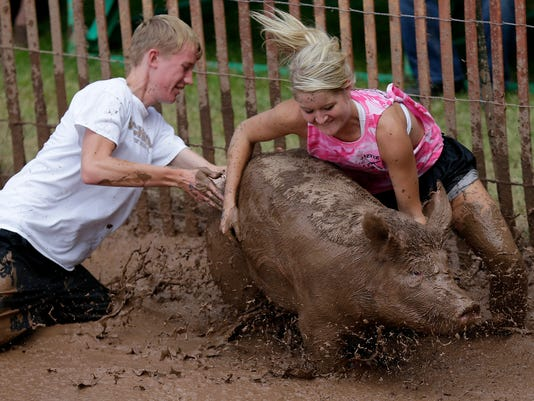 -APC Pig Rassle 0111 081014wag.jpg_20140810.jpg