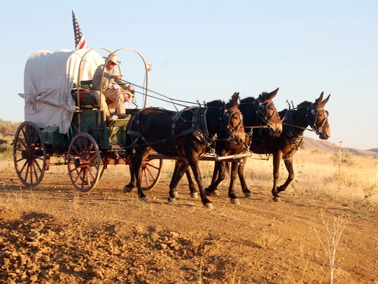 """Rinker Buck's newly published """"The Oregon Trail"""" recounts his 2011 journey with his brother via covered wagon over the historic path across the western half of the United States. Here the wagon is descending a steep hill near Farewell Bend, Oregon."""