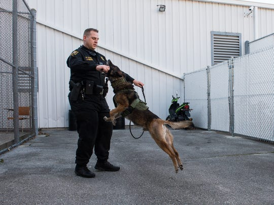 Deputy First Class Jeff Heath holds a toy as K-9 Uke bites it at the Wicomico County Sheriff's office on Tuesday, Jan. 5, 2018.