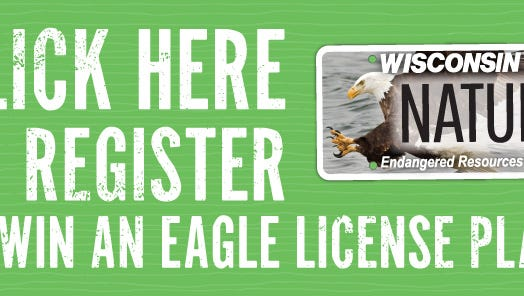 With each purchase of an Endangered Resources license plate, you will be helping protect and manage Wisconsin's rare species and habitats.